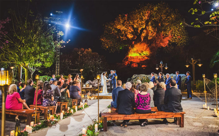 Wedding at Tree of life