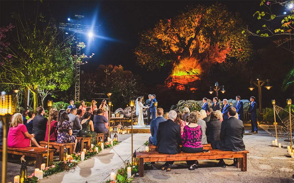 Wedding at Tree of life